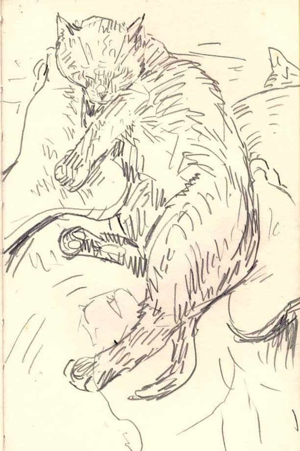 Sketchbook-1996-Siesta-cat
