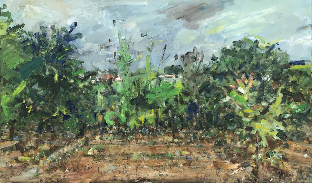 Start of vegetable garden.  (April 2020) Oil on canvas